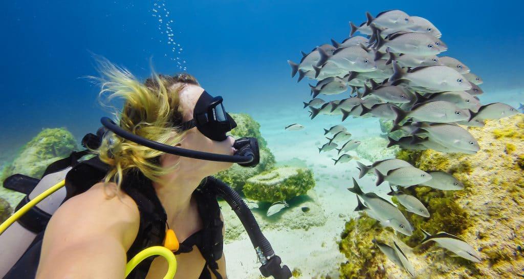 maldives diver